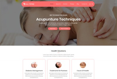 Acupuncture WordPress Theme